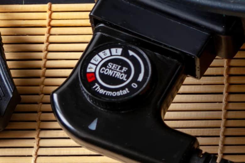 Electric Skillet Temperature Control